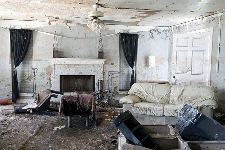 home-mold-photo
